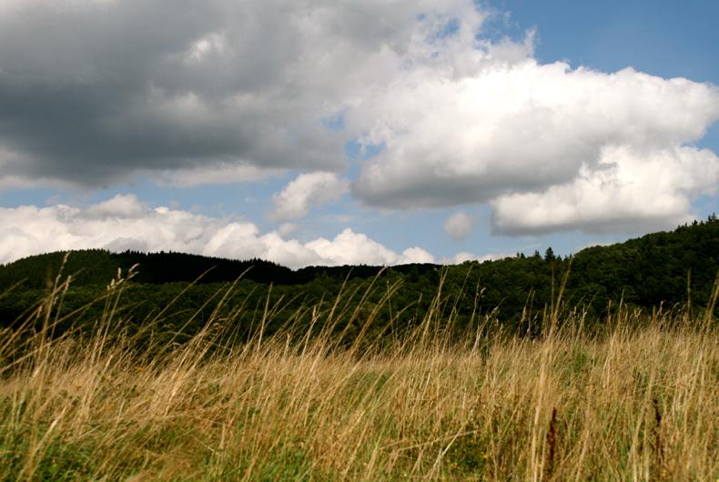 Eindrücke aus der Landschaft